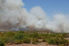 Le feu de forêt dévastant la terre en Croatie Photographie stock libre de droits