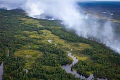 Le feu de forêt dans la forêt Images stock