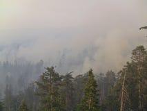 Le feu de lac | San Bernardino Mountains | Big Bear | été de 2015 Image stock