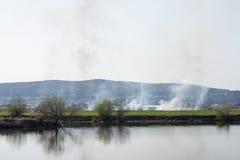 Le feu de végétation sur le rivage Photos libres de droits