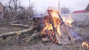 Le feu de vieilles portes et de branches sèches des arbres banque de vidéos