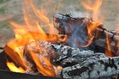 Le feu du gril Image stock