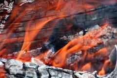 Le feu en bois Photo libre de droits