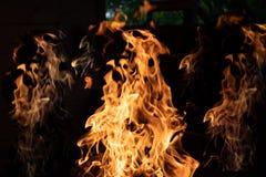 Le feu en bois sur le fond noir Flammes du feu sur le fond noir Rages du feu dans l'obscurit? Feu la nuit Les flammes sont images stock