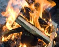 Le feu et bois de chauffage dans la forêt, firecamp Photographie stock libre de droits