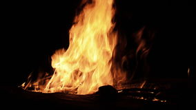 Le feu et essence engloutissant le bois la nuit banque de vidéos