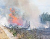 Le feu et fumée Photographie stock