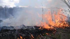 Le feu et fumée-dangereux lourds pour l'environnement banque de vidéos