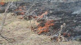 Le feu et fumée-dangereux lourds pour l'environnement clips vidéos