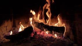 Le feu flambe des bois en hiver de cheminée Image stock