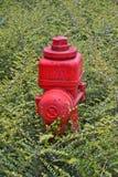Le feu Hidrant Photos libres de droits
