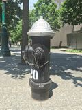 Le feu Hidrant Photographie stock