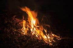 Le feu lumineux une nuit foncée photo libre de droits