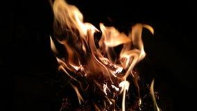 Le feu né Images libres de droits