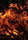 Le feu pour l'échauffement Photo libre de droits