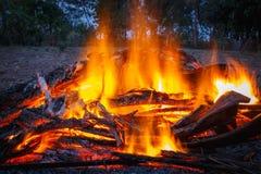 Le feu tout en brûlante du bois image libre de droits