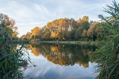 Le feuillage d'automne s'est reflété en rivière photographie stock libre de droits