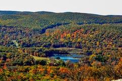 Le feuillage d'automne scénique remplit vue montagneuse images libres de droits