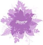 Le feuillage d'isolement par rose silhouette la bannière à la mode Photos stock