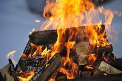 Le fiamme di un fuoco di notte con il legno di betulla illustrazione di stock