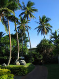Le Fiji photo stock