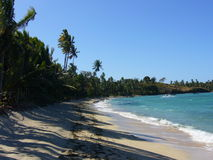 Le Fiji photographie stock