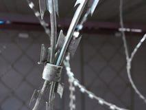 Le fil d'acier barbelé sont préparés pour le fond gris de ventes photo libre de droits