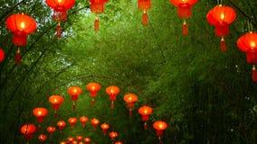 Le file delle lanterne rosse di stile di cinese tradizionale che appendono sul tunnel di bambù dell'albero incurvano video d archivio