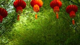 Le file delle lanterne rosse di stile di cinese tradizionale che appendono sul tunnel di bambù dell'albero incurvano stock footage