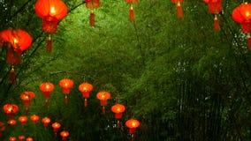 Le file delle lanterne rosse di stile di cinese tradizionale che appendono sul tunnel di bambù dell'albero incurvano archivi video