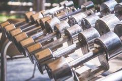 Le file delle teste di legno del metallo sullo scaffale nella palestra, addestramento del peso forniscono Fotografia Stock