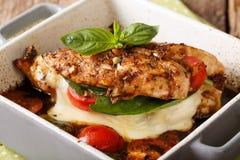 Le filet délicieux de poulet a fait cuire au four avec le plan rapproché caprese dans une cuisson image libre de droits