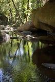 Le filet du benneth de l'eau les roches et les rochers de la gorge du Blavet Photos libres de droits