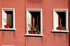 Le finestre nella facciata fotografie stock libere da diritti