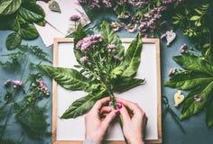 Le fleuriste féminin remet faire le groupe de fleurs avec les feuilles vertes sur l'espace de travail avec le plateau blanc Photographie stock