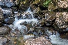 Le fleuve Images stock