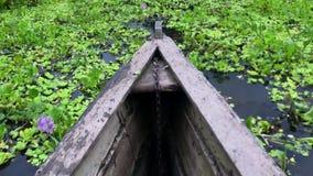 Le fleuve Amazone - une tige en bois de bateau se déplaçant par l'eau complètement des greenleaves banque de vidéos