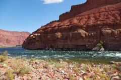 Le Fleuve Colorado Dans le désert Photos stock