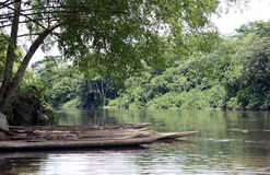 Le fleuve Congo Images libres de droits