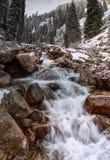 Le fleuve de montagne Image libre de droits