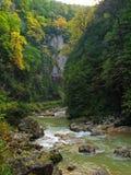 Le fleuve de montagne Image stock