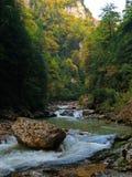 Le fleuve de montagne. Photographie stock libre de droits