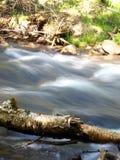 Le fleuve de montagne photographie stock libre de droits