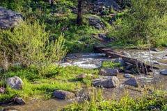 Le fleuve de montagne photo stock