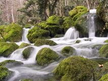 Le fleuve de montagne en hiver Photos libres de droits