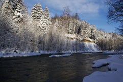 Le fleuve en bois en hiver Photographie stock
