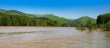 Le fleuve en montagnes à l'été Image stock