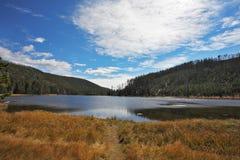 Le fleuve pittoresque en automne photo libre de droits