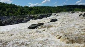 Le fleuve Potomac chez Great Falls clips vidéos