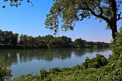 Le fleuve Sacramento Photo stock